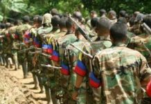 The Colombian government is encouraging individual members of armed groups to surrender