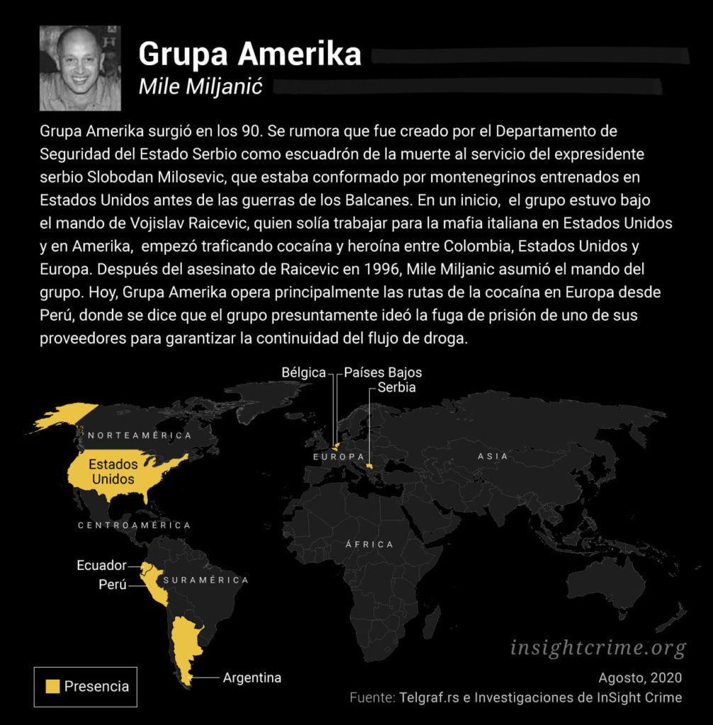profile graphic grupa amerika